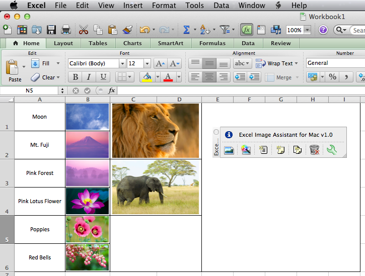 Excel Image Assistant for Mac