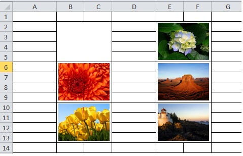 inserted pictures into merged cells in Excel